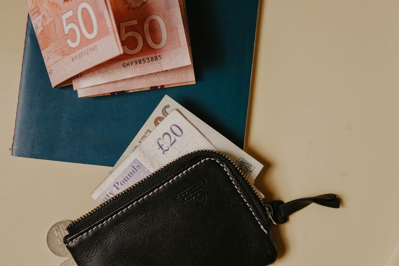 Vegan wallet with money